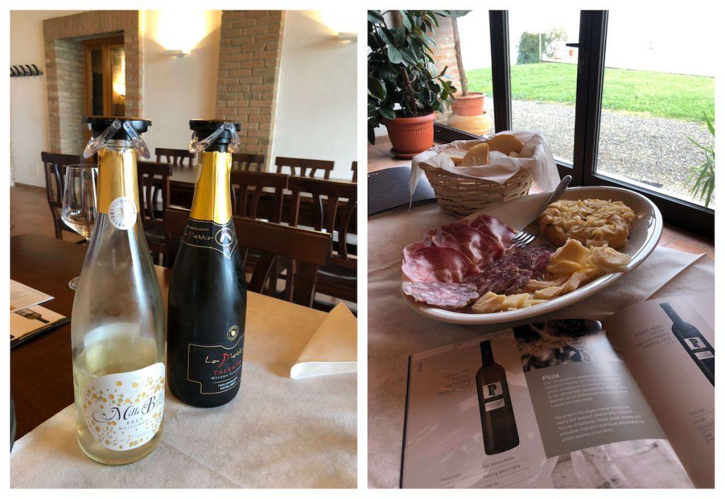 viajes alkasa vino organico padroggi italia
